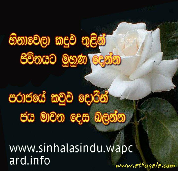 Sri lanka love zone